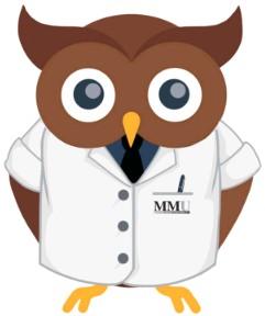 MMU Mascot Owl Hoot