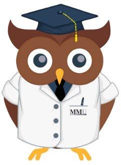 Master Mind University (MMU)